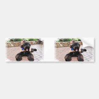 Black Russian Terrier - Vader Car Bumper Sticker