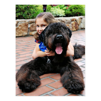 Black Russian Terrier - Vader Postcard