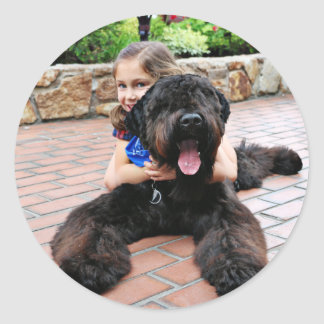 Black Russian Terrier - Vader Classic Round Sticker