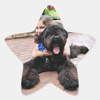 Black Russian Terrier - Vader Star Sticker