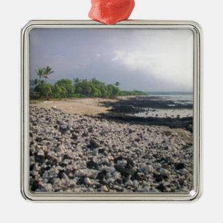 Black Sand Beach in Hawaii Ornaments