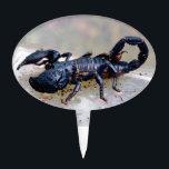 "Black Scorpion Cake Topper<br><div class=""desc"">Large black African jungle scorpion.</div>"