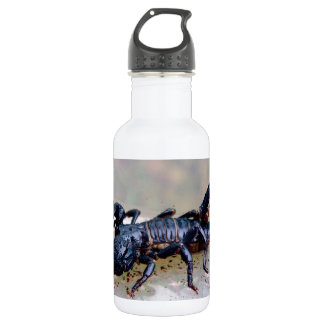 Black Scorpion Water Bottle