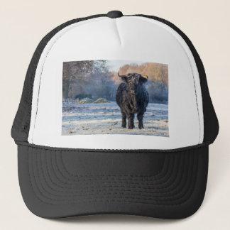 Black scottish highlander cow in winter landscape trucker hat