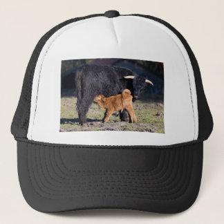 Black Scottish highlander mother cow with drinking Trucker Hat