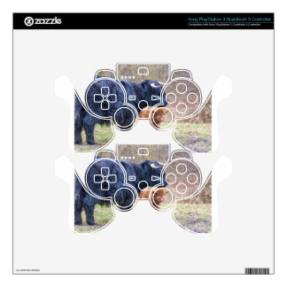Black Scottish highlander mother cow with newborn Decal For PS3 Controller