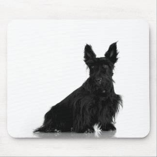 Black Scottish Terrier Mouse Pad