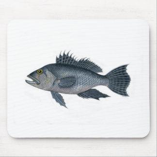 black sea bass 3  signed 2442.jpg mouse pad