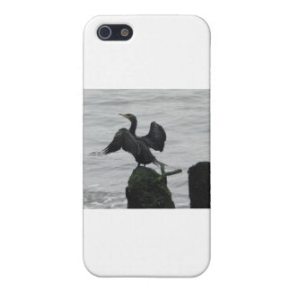 Black Seabird Cover For iPhone SE/5/5s