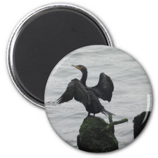 Black Seabird Magnet