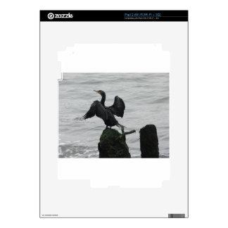 Black Seabird Skin For The iPad 2