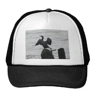 Black Seabird Trucker Hat