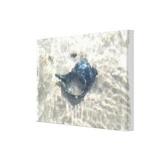 Black Seashell Stretched Canvas Print