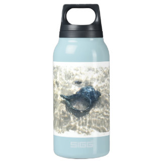 Black Seashell Insulated Water Bottle