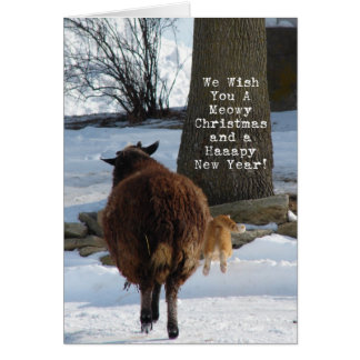 Black Sheep and Cat, Christmas Card