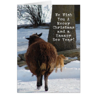 Black Sheep and Cat, Christmas Fun Card