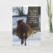 Black Sheep and Cat, Christmas Fun Holiday Card