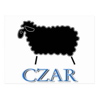 Black Sheep Czar Postcard