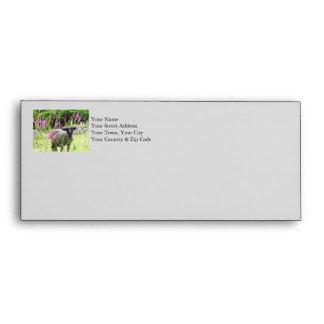 Black Sheep Envelope