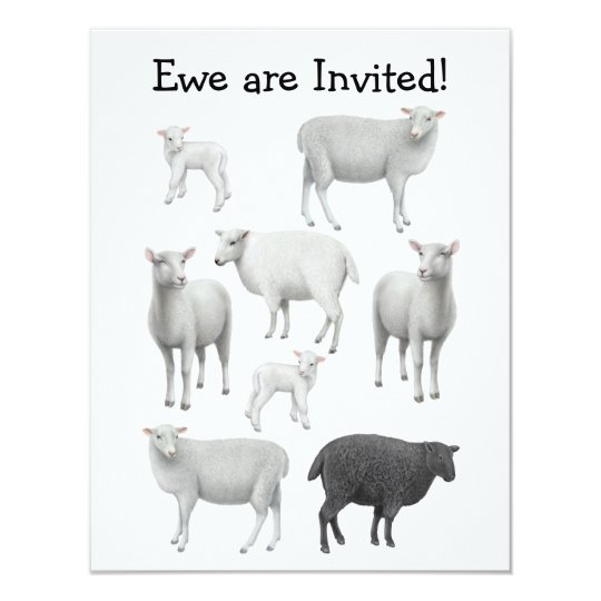 Black Sheep Invitation