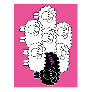 Black Sheep (Love) Postcard