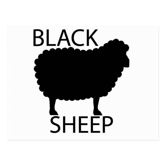 Black Sheep Postcard