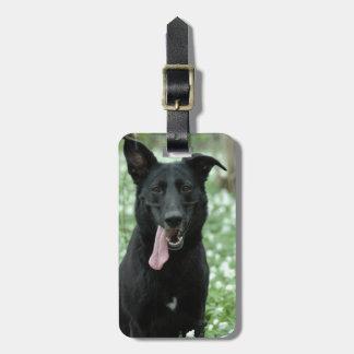 Black Shepherd Luggage Tag