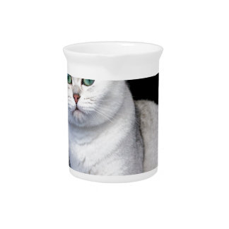 Black silver shaded British short hair cat Beverage Pitchers