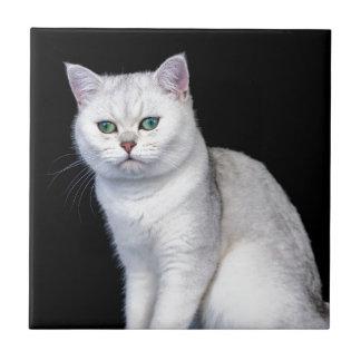 Black silver shaded British short hair cat Ceramic Tile