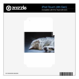 Black silver tabby kitten lying lazy iPod touch 4G skin