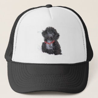 Black Silver Toy Poodle puppy bling Trucker Hat