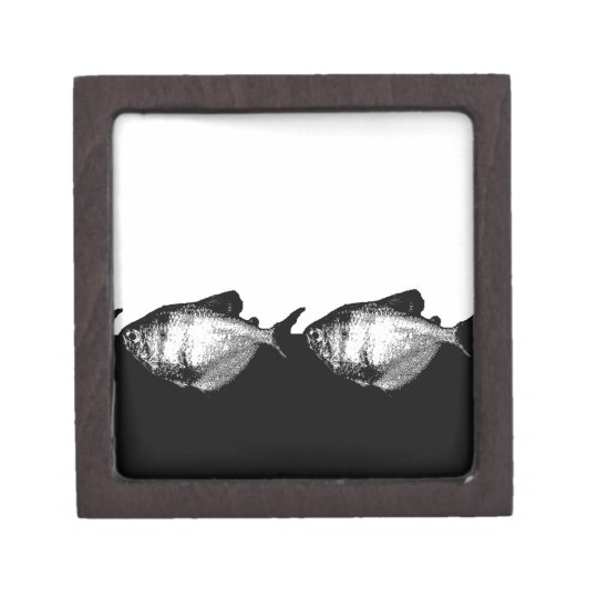 Black Skirt Tetra Fish in a Line Gift Box