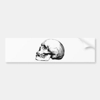 Black Skull Bumper Sticker