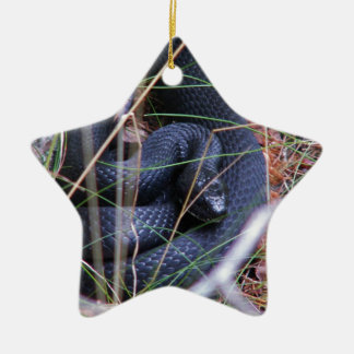 Black snake ornaments