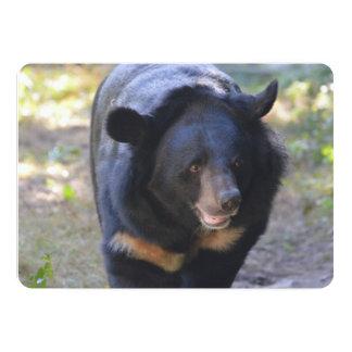Black Spectacled Bear Card