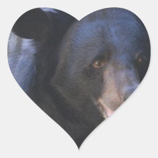 Black Spectacled Bear Heart Sticker