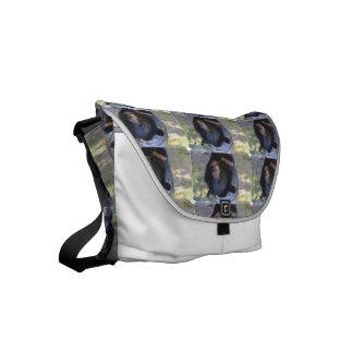 Black Spectacled Bear Small Messenger Bag