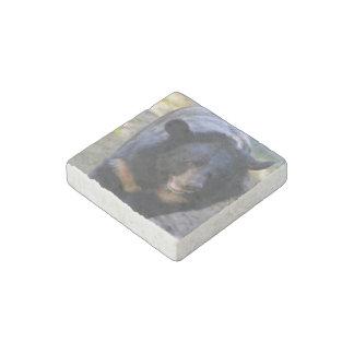 Black Spectacled Bear Stone Magnet