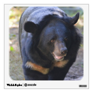 Black Spectacled Bear Wall Decal