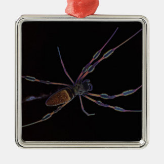 Black spider creeping and crawling metal ornament