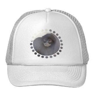 Black Spider Monkey  Baseball Hat