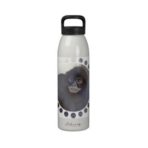 Black Spider Monkey Water Bottle