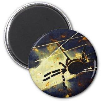 Black Spider Novelty Items magnet
