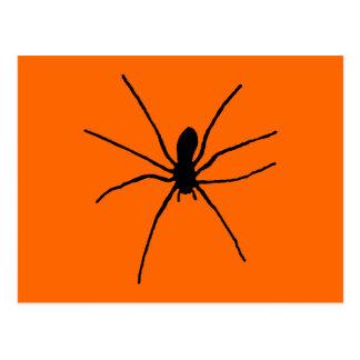 Black Spider Template Postcard