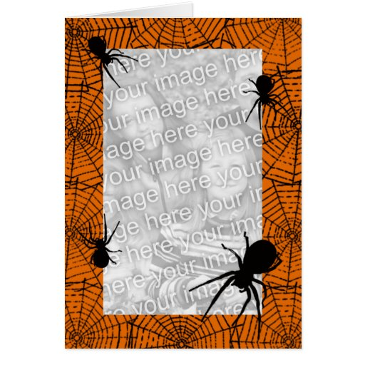Black Spiders Photo Greeting Card