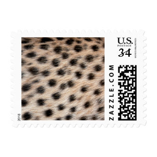 black spotted Cheetah fur or Skin Texture Template Stamps