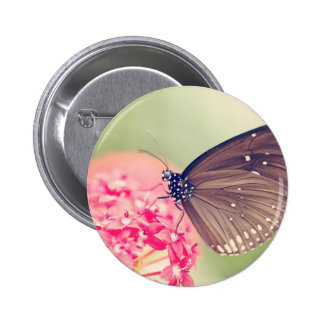 Black Spotted Crow Butterfly Button