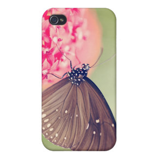 Black Spotted Crow Butterfly iPhone 4 Cover