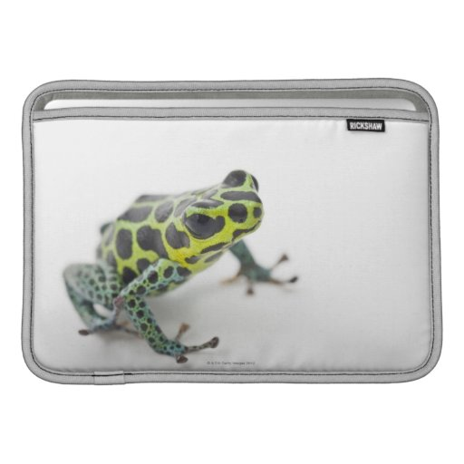 Black Spotted Green Poison Dart Frog MacBook Air Sleeve