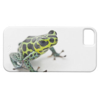 Black Spotted Green Poison Dart Frog (Ranitomeya iPhone SE/5/5s Case